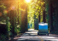 Camping in Redwoods. Travel Trailer RV on the Redwood Highway. California RVing. Camper on the Road.
